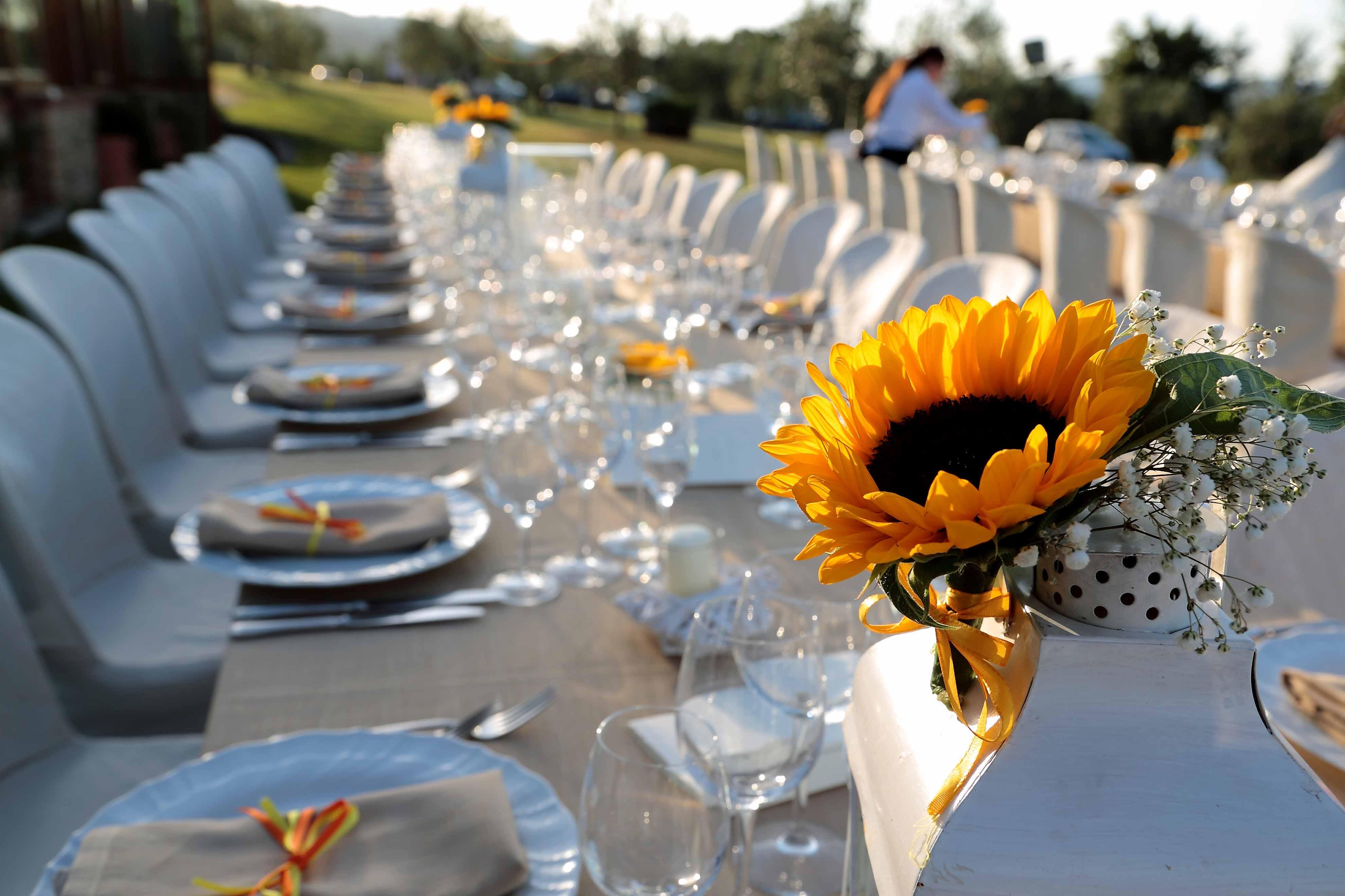 Guestbook Matrimonio Girasoli : Officine creative guestbook per matrimonio con girasoli